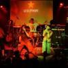 La Banda de Rock Guillermina tocará en el Festival Vamos lxs Pibxs